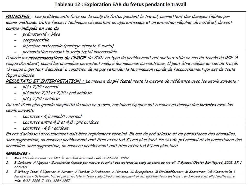 Tab12-explo foetus