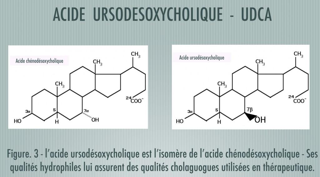 2013Acideursodesoxycholique